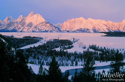 Snow Covered Tetons