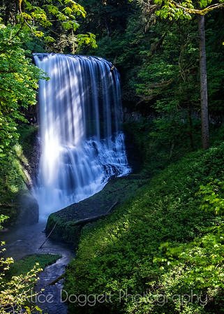 Middle North Falls (Vertial), Silver Falls State Park, Oregon