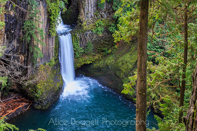 Toketee Falls, North Umpqua River,  Southwest Oregon