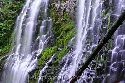 Proxy Falls, Oregon - Close Up