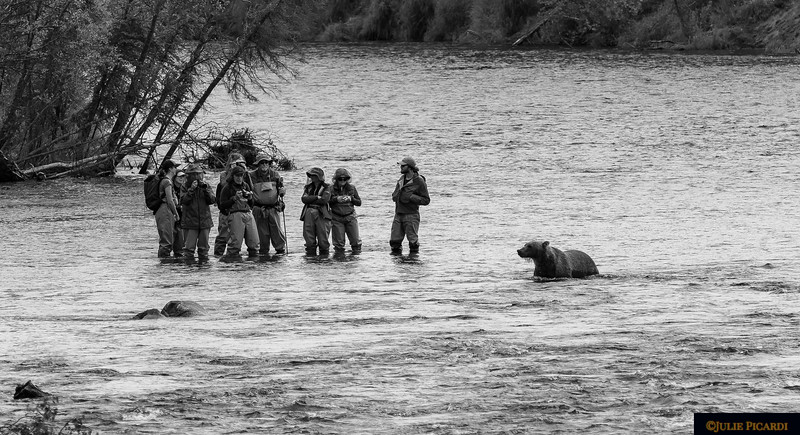 B&W image of people learning to fly fish. I think the bear wants to take lessons as well.