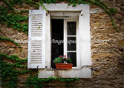 Single Shutter, La Garde Freinet, Provence 2011