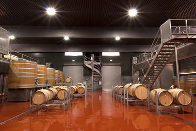 Barrel Room, Elephant Hill Winery, New Zealand