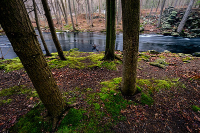 Beginning of Spring 2017 in the woods at Southford Falls State Park in Southbury, CT, USA.