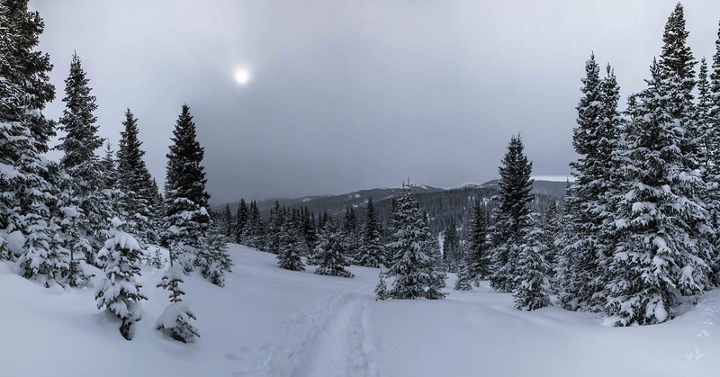 Vail Snow, Winter Wonderland