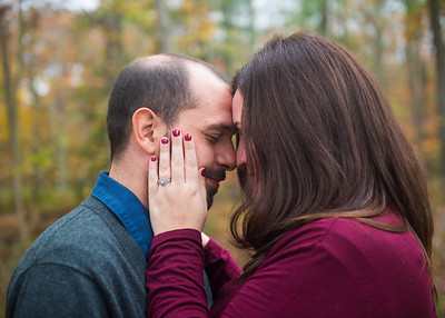 Colleen and Mike Engagement Photos 11-5-17