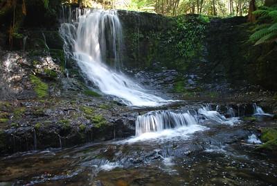 Taken at Horseshoe Falls.