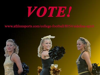 Erin Vote 02 copy