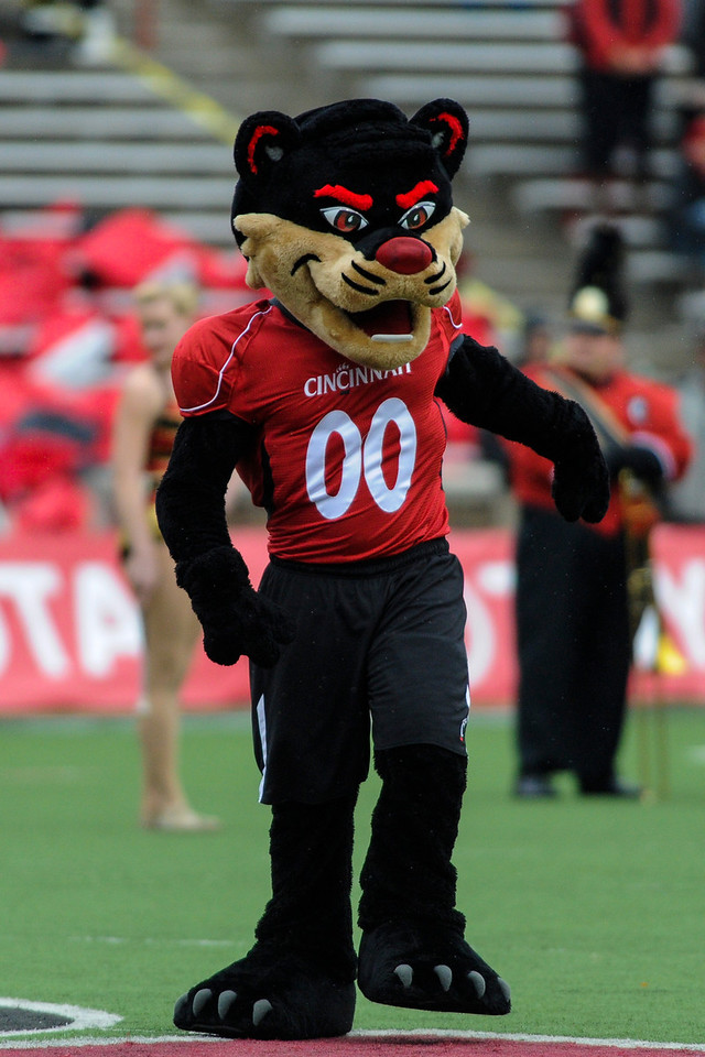 Cincinnati Bearcats mascot during the game.  Cincinnati Bearcats defeated Syracuse Orange (35-24) at Nippert Stadium in Cincinnati, Ohio.