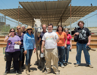 CIP Equine Therapy