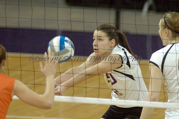 2006 LSU Volleyball