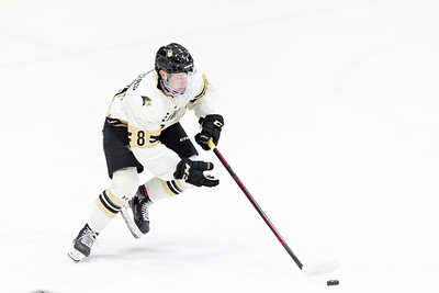 The Lindenwood Lions started their season with a 5–0 victory over Missouri State on September 25th at Centene Community Ice Center.
