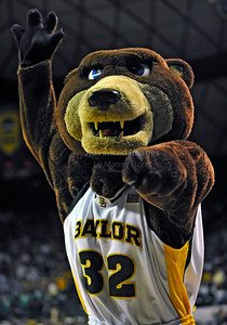 Jan 26th, 2010:   Baylor Bear Mascot in action in a NCAA basketball game between the Kansas State Wildcats and the Baylor Bears at the Ferrell Coliseum in Waco, Texas. Kansas State wins 76-74