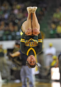 March 6th, 2010:   Baylor Bears Cheerleader in action in a NCAA basketball game between the Texas Longhorns and the Baylor Bears at the Ferrell Coliseum in Waco, Texas. Baylor wins 92-77