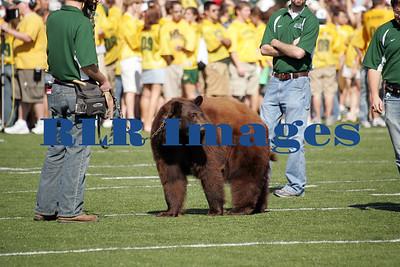 Baylor Bears vs Univ Texas Nov 6 2005 (2)