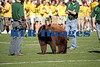 Baylor Bears vs Univ Texas Nov 6 2005 (2)