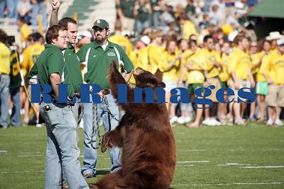 Baylor Bears vs Univ Texas Nov 6 2005 (4)