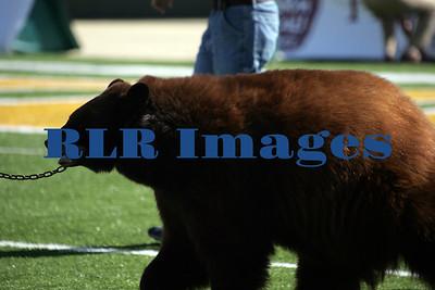 Baylor Bears vs Univ Texas Nov 6 2005