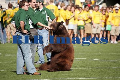 Baylor Bears vs Univ Texas Nov 6 2005 (3)