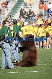 Baylor Bears vs Univ Texas Nov 6 2005 (7)