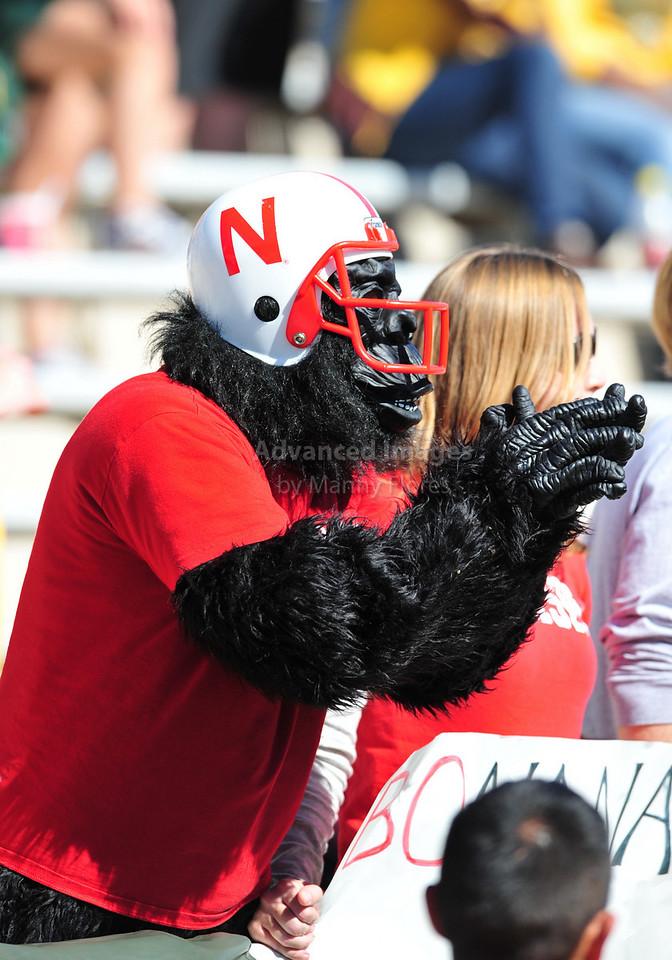 October 31st, 2009:  <br /> Nebraska Cornhusker's fans cheer during a NCAA Football game between the Nebraska Cornhuskers and Baylor Bears at Floyd Casey  Stadium in Waco, TX.  <br /> Nebraska wins 20-10.