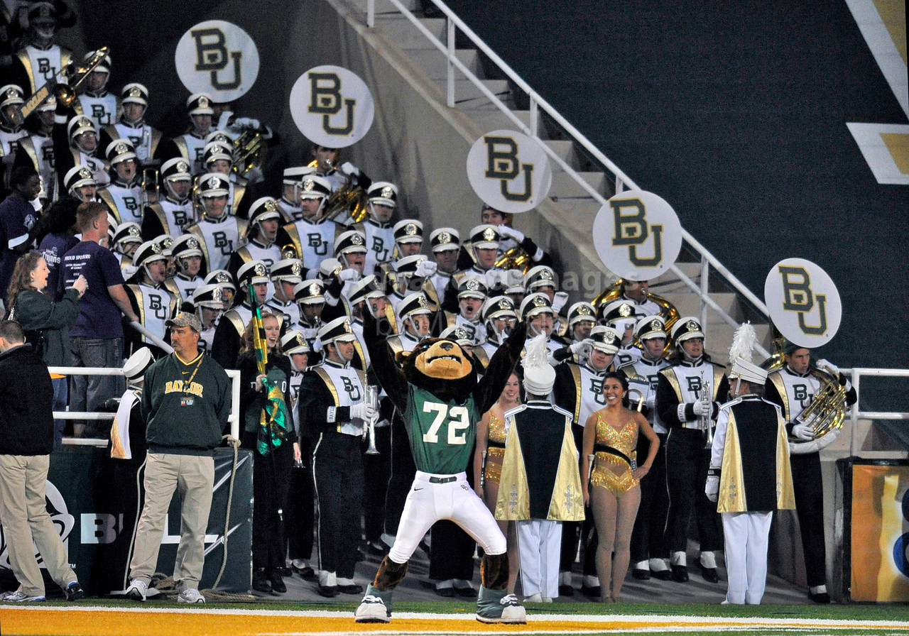 13 Nov 2010:  <br /> Baylor Bears Mascot rallies the baylor band behind it<br /> of their NCAA football game between the Texas A&M Aggies and the Baylor Bears at Floyd Casey Stadium in Waco, Texas.<br /> The Aggies beat the Bears 42-30.