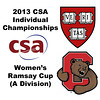 2013 College Squash Individual Championships - Ramsay Cup - Quarters: Amanda Sobhy (Harvard) and Danielle Letourneau (Cornell)