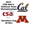 2013 Men's College Squash National Team Championships: Julian Gill (Cal) and Mikael Rellier (Minnesota)