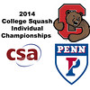 b20 2014 CSA Individuals Penn Cornell HCQ