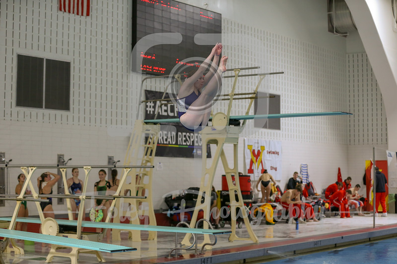 America East Swimming Championships
