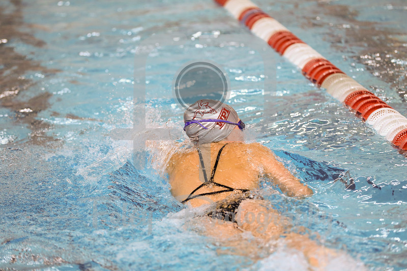 2019 WPI Swimming and Diving
