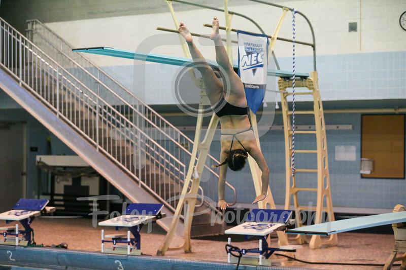 2021 NEC Diving Championships