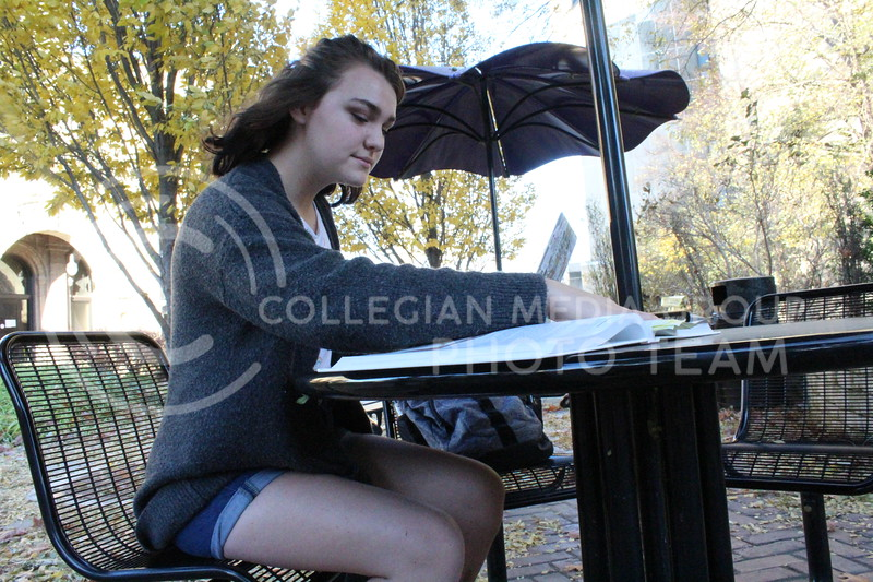 With her textbooks out, junior Kathryn Hutson works on a project on her computer. Hutson is currently a Psychology major in the college of Art and Sciences. Wednesday, November 7, 2020. (Jordan Henington | Collegian Media Group)