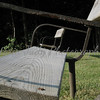 A Dog's View Of The Benches<br /> <br /> [Project 2 - The Outdoors From Different Views]