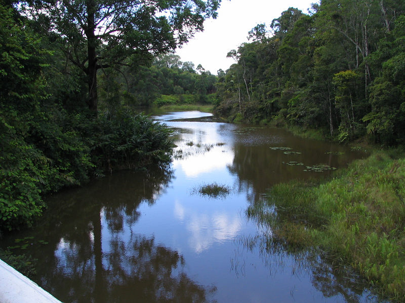The river that ran near the bungalos