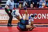 wrestling-4339