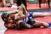 wrestling-4352