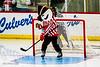 hockey-8891