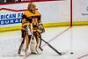 hockey-2715