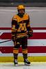 hockey-2706