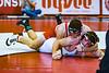 wrestling-3686