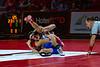 wrestling-4196