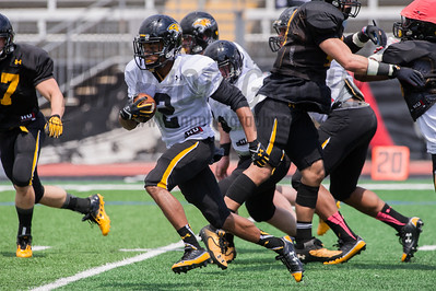 Towson Spring Game 4/26/14 - phil (photos not for sale)