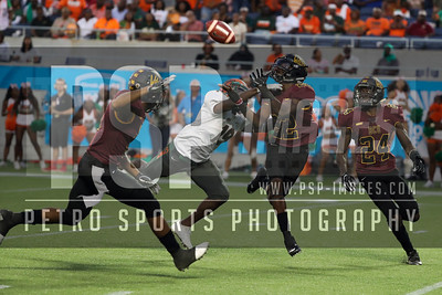 COLLEGE FOOTBALL: NOV 18 Florida A&M v Bethune-Cookman