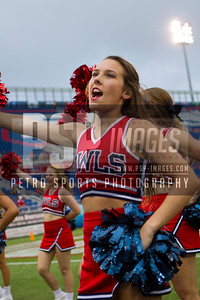 FAU cheerleader during the football game between the visiting Western Kentucky Hilltoppers and the FAU Owls on October 29, 2016. ( Allison Petro, The Skyboat )