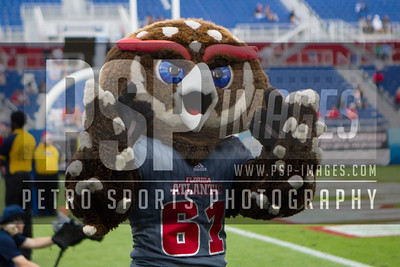 FAU's mascot Owlsley the Owl during the football game between the visiting Western Kentucky Hilltoppers and the FAU Owls on October 29, 2016. ( Allison Petro, The Skyboat )