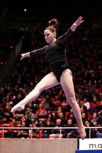 U of U Gymnastics vs Stanford 2-23-2013. Tory Wilson