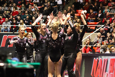 Utah Gymnastics Meet against UCLA 01-25-2014.