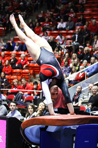 Utah Gymnastics Meet against Washington 02-28-2014. Red Rocks defeat Washington 197.125-193.475