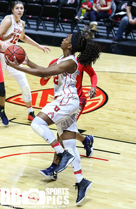 University of Utah Women's Basketball vs Arizona University at Jon M. Huntsman Center on 01-08-2017. The Utes lose to the Wildcats 70-81. ©2017 Bryan Byerly  #goutes  #elevate